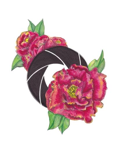 Floral Shutter Watercolor Print 8x10